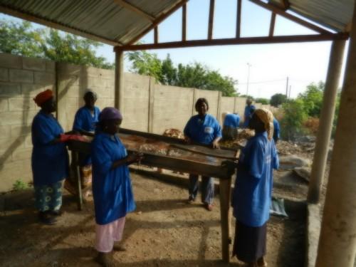 Les femmes de l'Afphy du quartier de Nanlog à Dapaong, au travail.