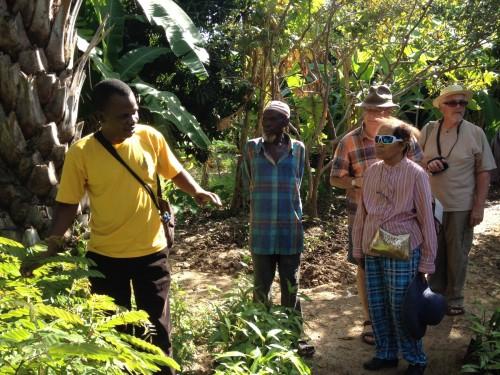 Salifou BOUNELE directeur de Sangou Man, accueil sur l'un des sites villageois la délégation de l'ADESDIDA et lui montre une pépinière destinée à l'agroforesterie.